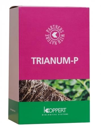 Trianum-P